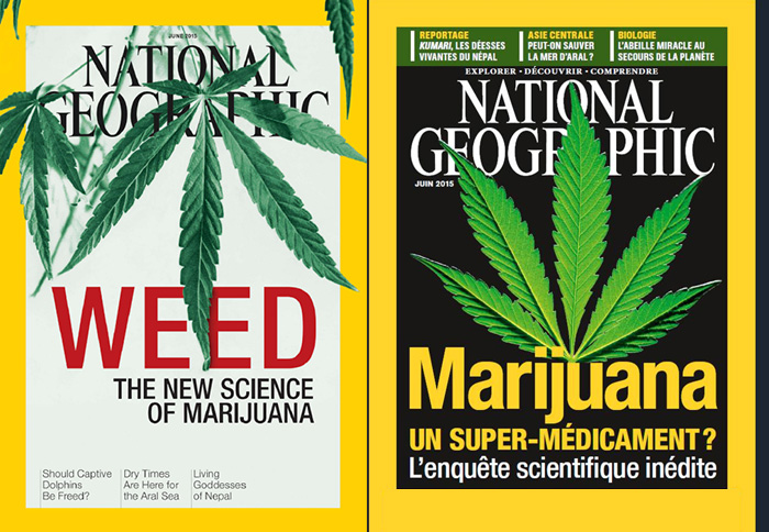 National Geographic juin 2015 sur la marijuana