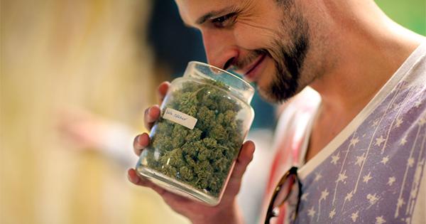 Comment savoir si bon cannabis