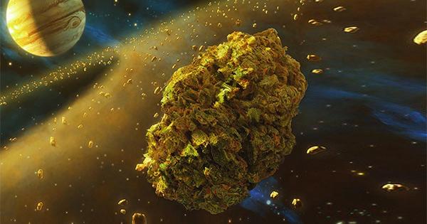 Dan Credu artiste cannabis