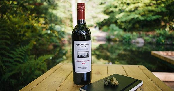 Cannabis nouveau vin
