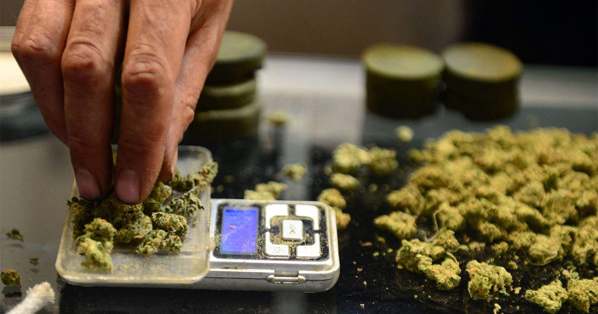 Prix du cannabis
