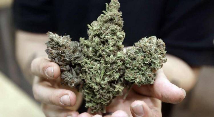 Augmentation de la consommation de cannabis aux Etats-Unis