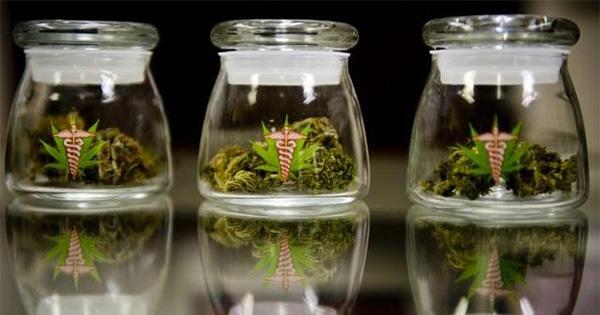 Cannabis médical en Illinois