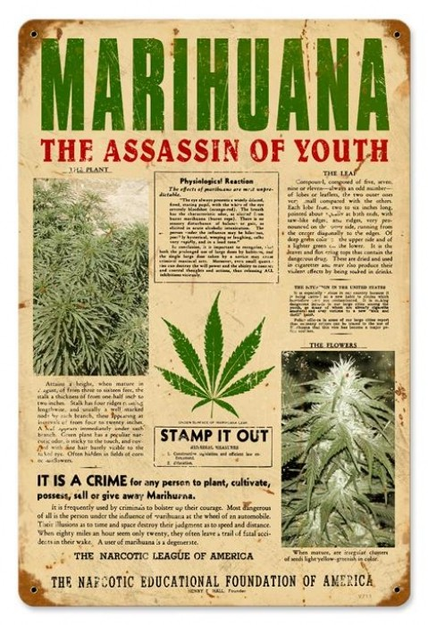 Marijuana assassin