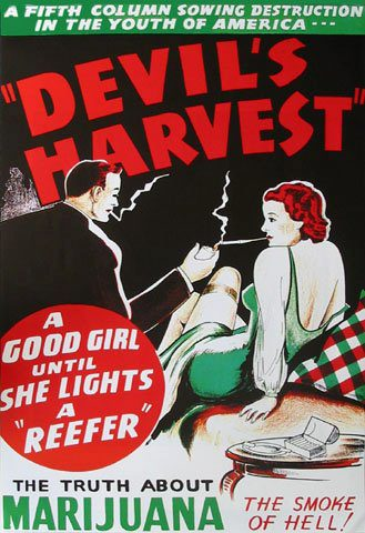 Devil cannabis