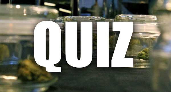 Quiz cannabis