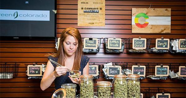 Employé d'un dispensaire de cannabis