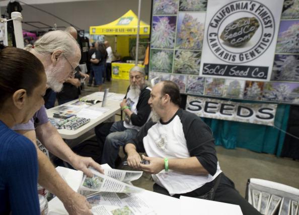 Sélectionneur de graines de cannabis