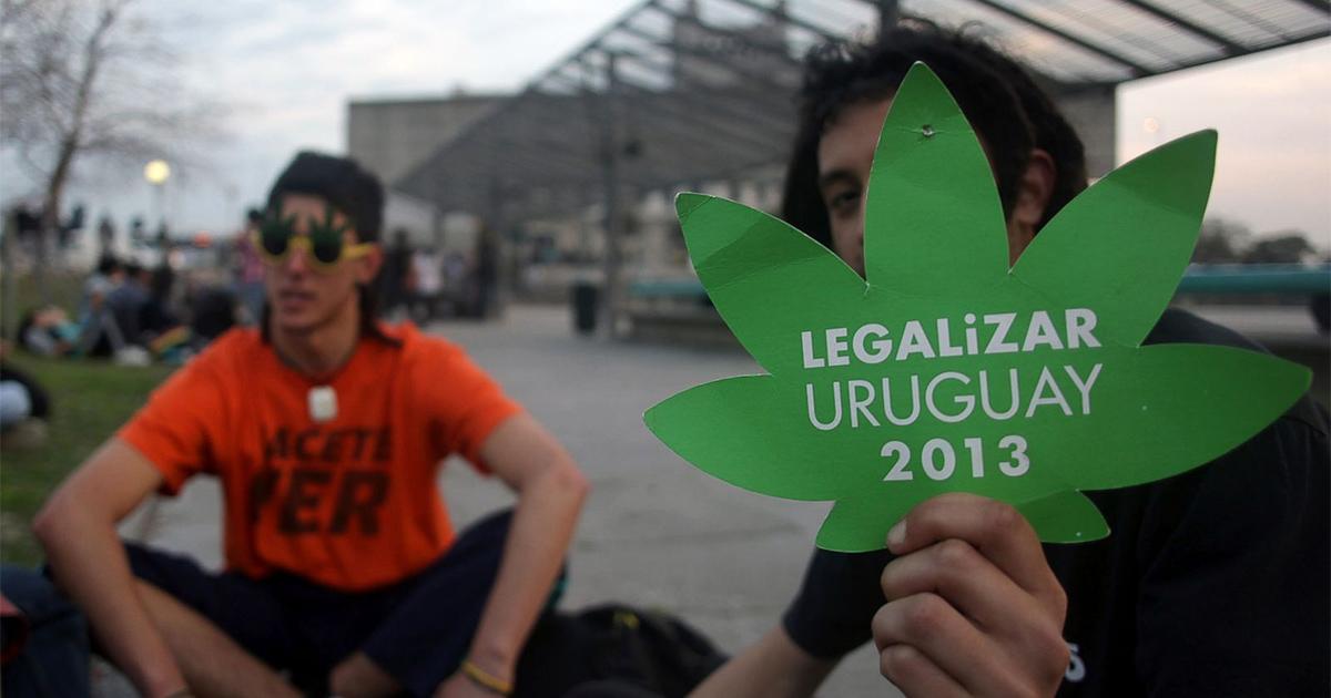 Vente de cannabis en Uruguay