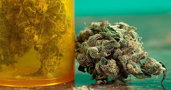 Le cannabis pour lutter contre les addictions