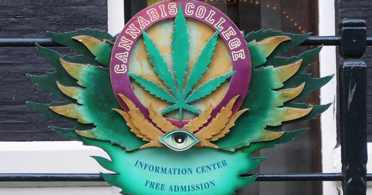 Le Cannabis College d'Amsterdam