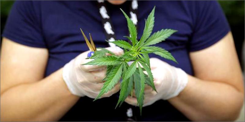 Cours sur le cannabis en France