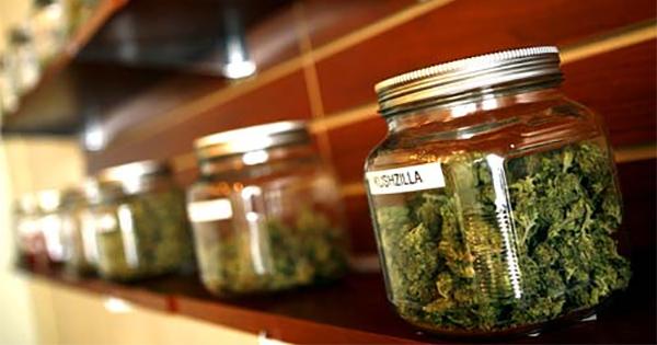 Le futur de la légalisation du cannabis au Canada