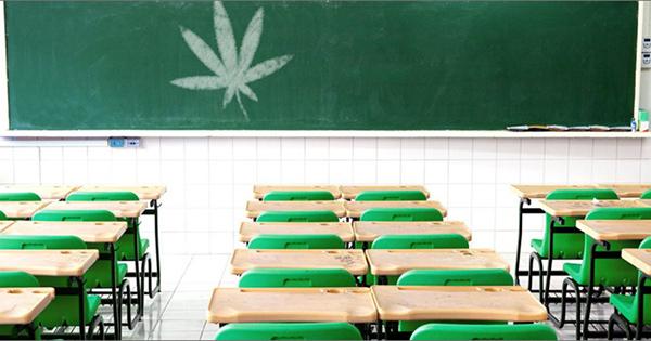 Du cannabis médical à l'école