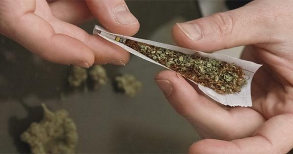 Mélange de cannabis et de tabac