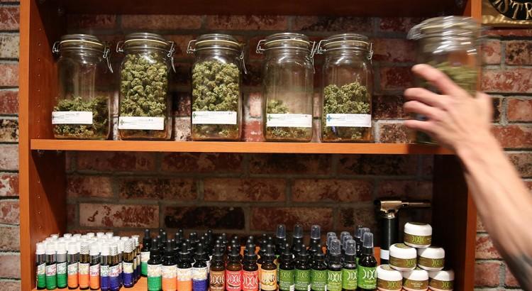 Raisons de légaliser le cannabis en France
