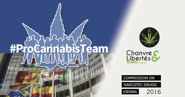 Procannabisteam
