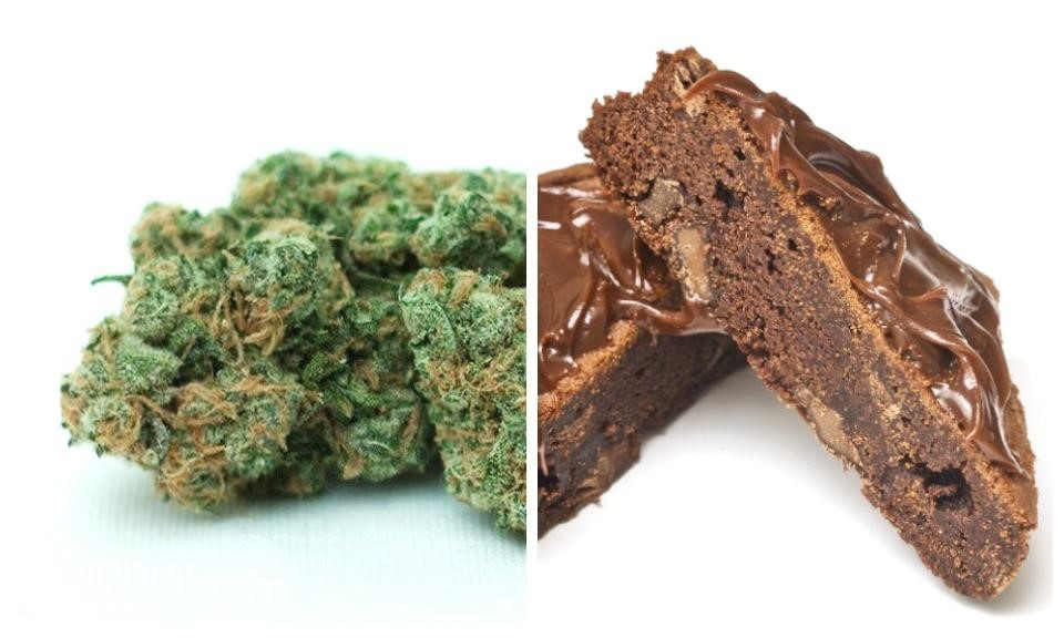 4 Differences Entre Fumer Et Manger Du Cannabis Newsweed