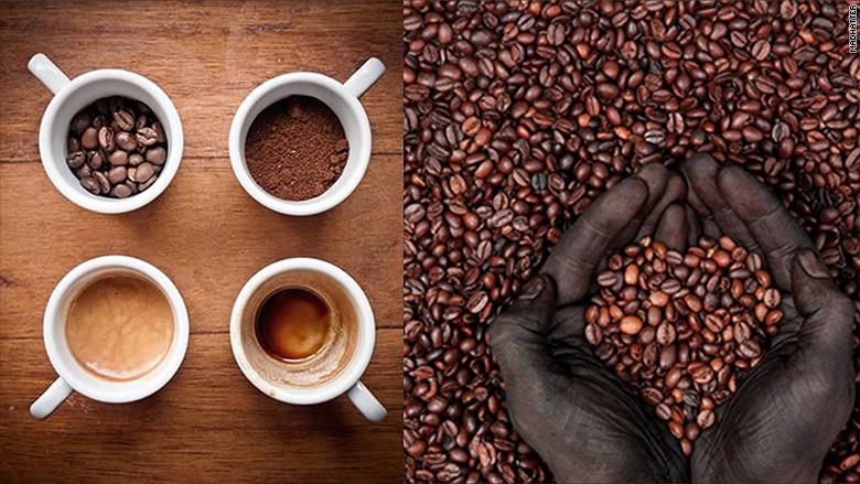 Café et thé au cannabis