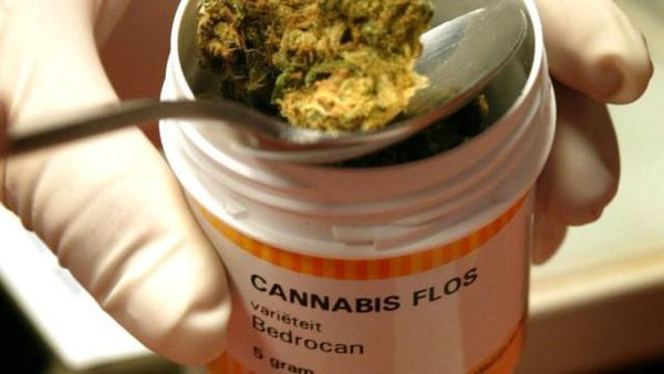 cannabis medical