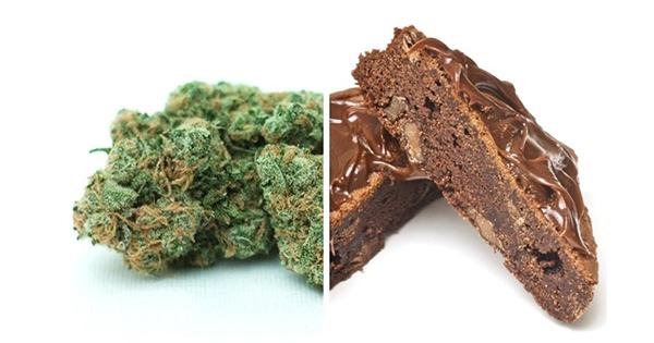 Les différences entre un joint et un space cake