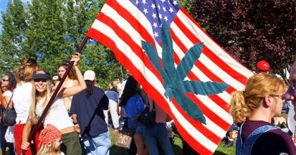 Sondage sur le cannabis aux USA