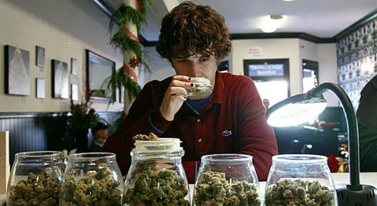 Cannabis récréatif en Californie