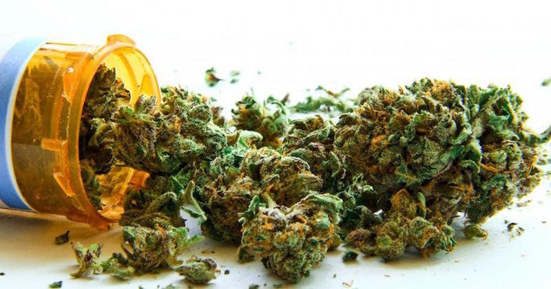 Découvertes sur le cannabis médical