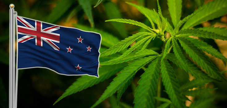 Cannabis en Nouvelle Zélande