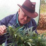 Selon Rick Simpson, le THC est un traitement médical