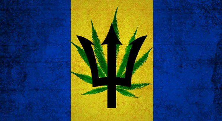 Dépénalisation du cannabis à la Barbade