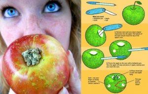 Comment faire une pomme bang