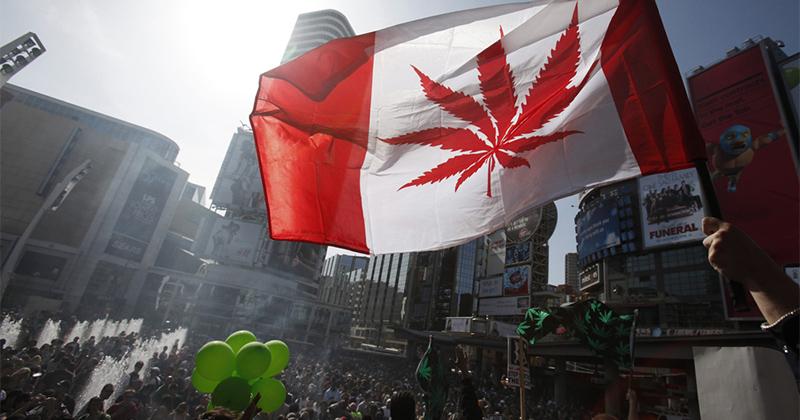 Processus de légalisation du cannabis au Canada