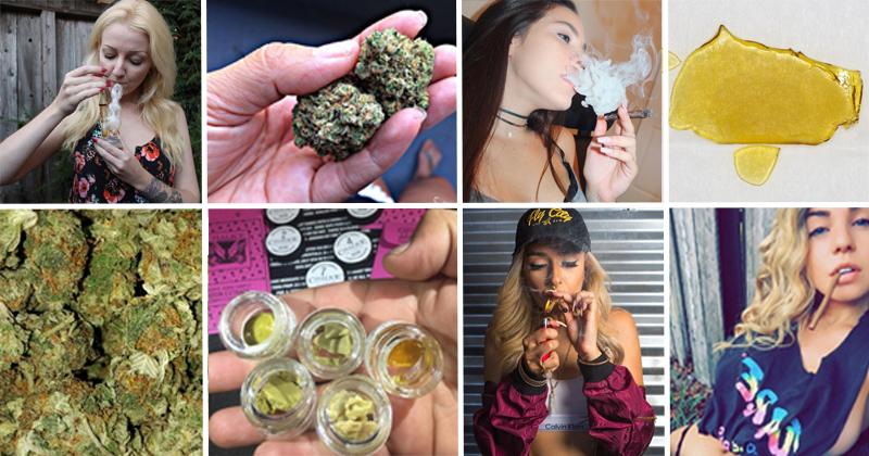 Comptes instagram de weed