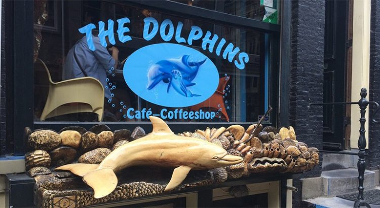Coffeeshop the Dolphins à Amsterdam