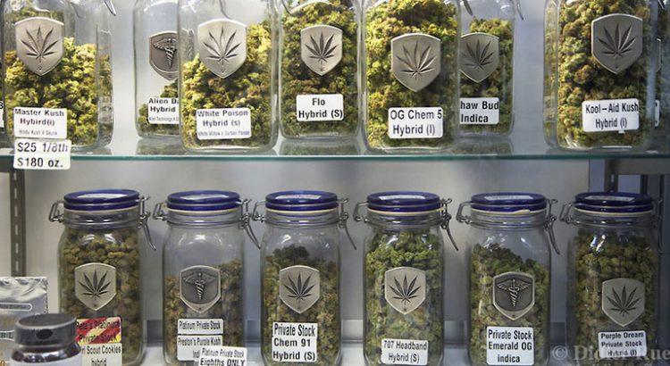 Les variétés de cannabis les plus chères