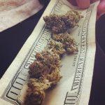 Légalisation dans L' État de Washington : Le prix du cannabis divisé par deux