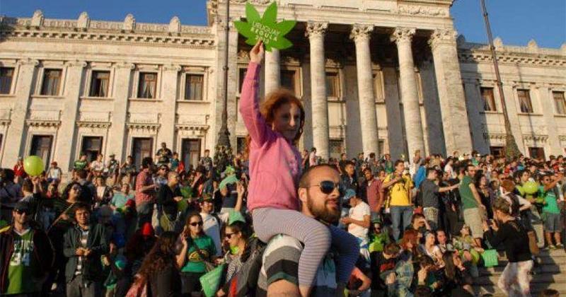 Pas assez de cannabis en Uruguay