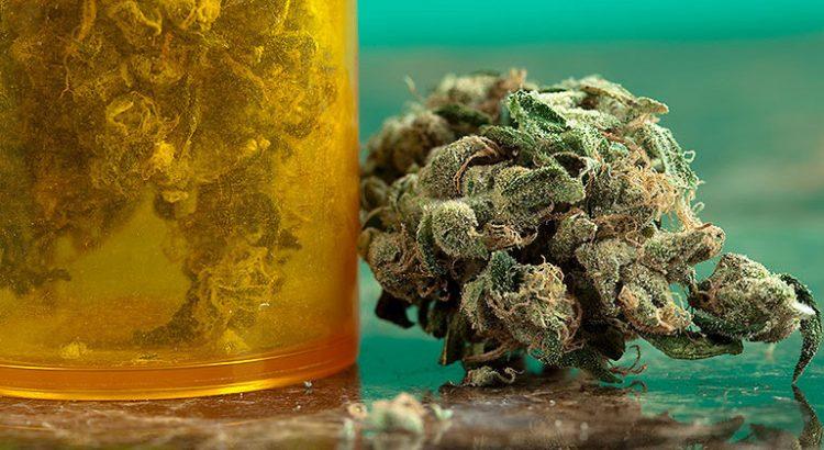 Effet antidouleur du cannabis