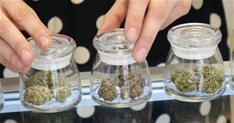 Banques canadiennes et cannabis