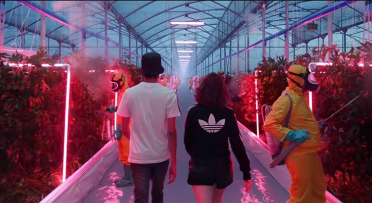 Pub Adidas avec du cannabis