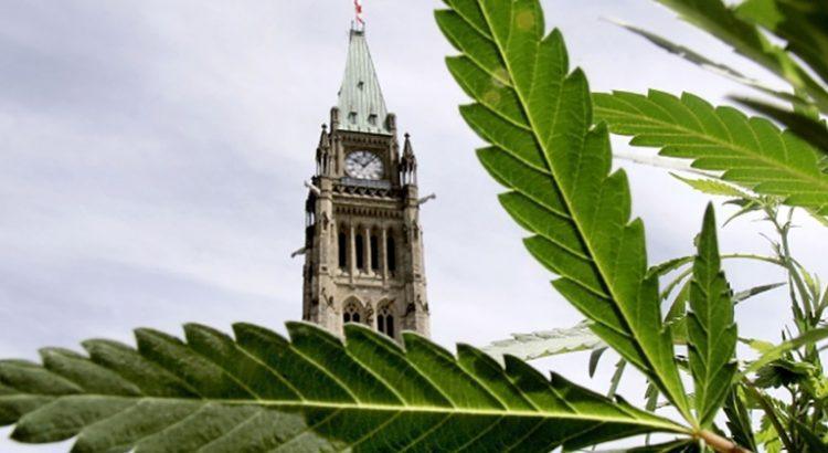 Age minimum d'accès au cannabis au Canada