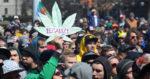 Les effets de la légalisation du cannabis aux Etats-Unis