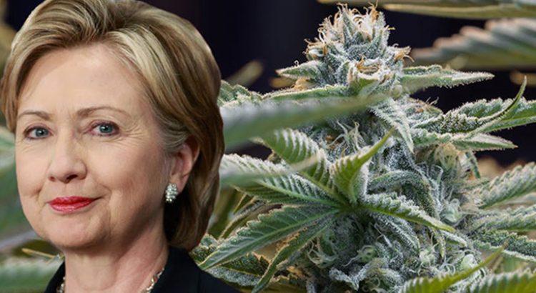 Hillary Clinton en faveur d'une dépénalisation du cannabis