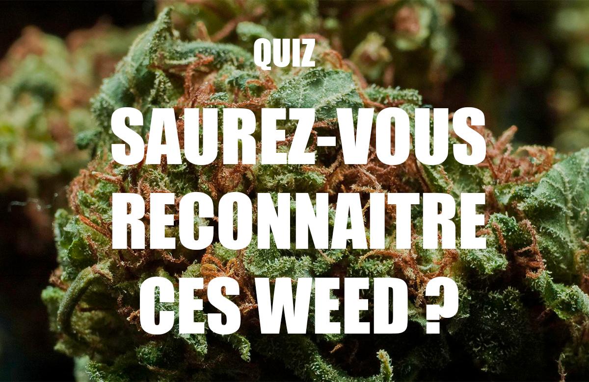 Comment reconnaître une weed