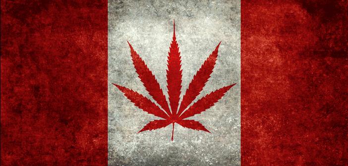 Entreprise canadiennes cannabis