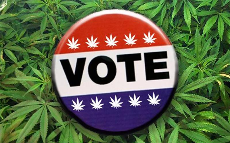 Elections américaines et cannabis