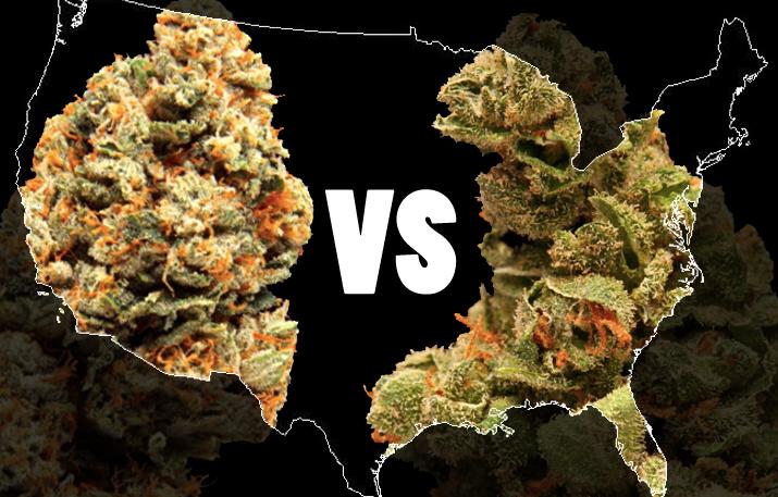 75 millions d'Américains et le cannabis
