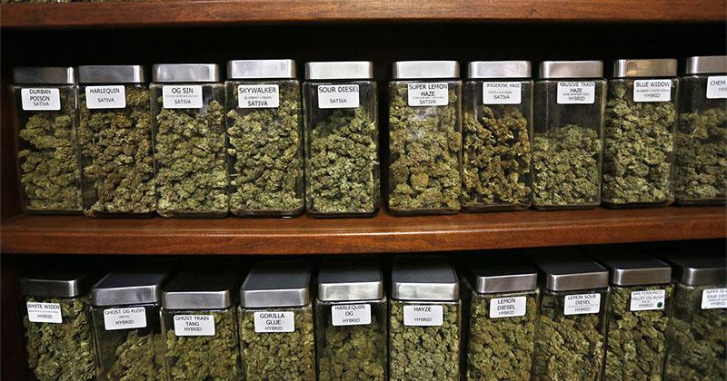 Les Irlandais pour la légalisation du cannabis médical
