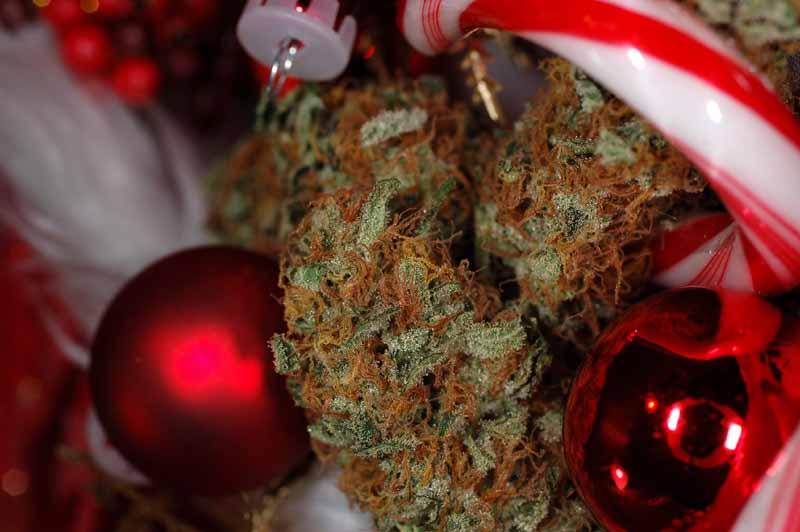 Cadeaux de Noël cannabis